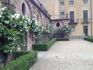 fioriture Villa della Regina